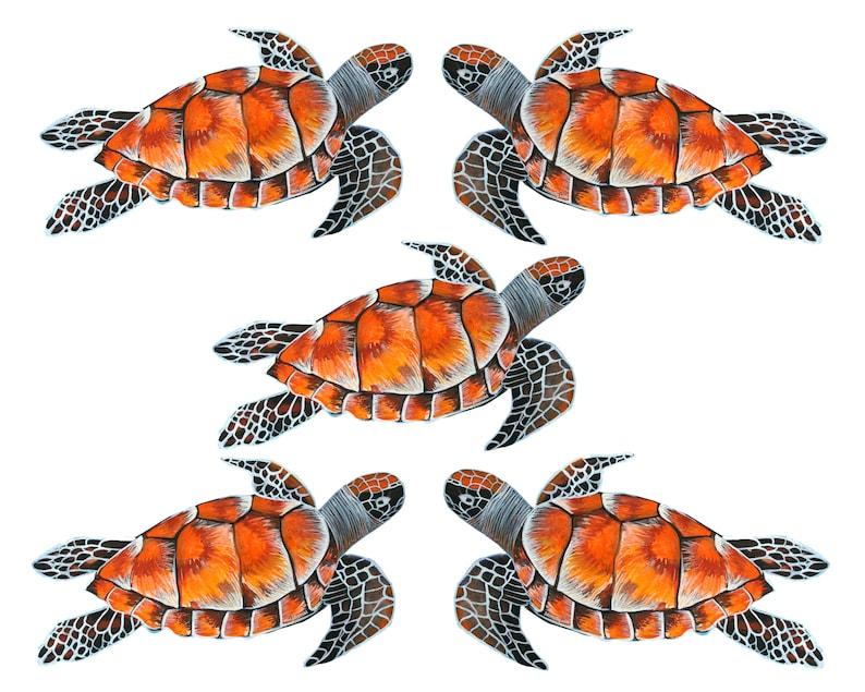Nature Sticker 5 x Turtle Stickers Ocean Sticker Vinyl Sticker High Quality Sticker Waterproof sticker