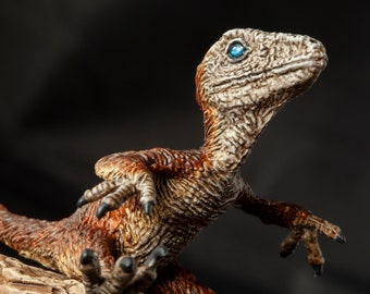 Utahraptor baby, hand painted dinosaur model