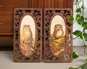 1977 Syroco Homeco Faux Wicker Wall Panel Frames with Owl Prints - Set of 2