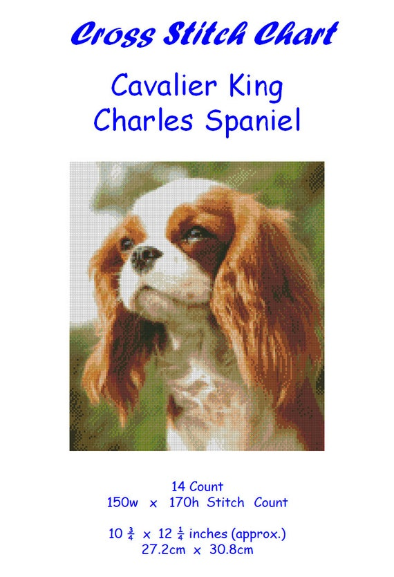 CKCS /& anglais Toy Spaniel Counted Cross Stitch Pattern