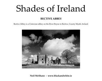 Shades of Ireland  -  Bective Abbey  - Zine