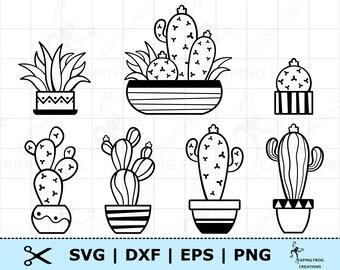 Cactus Svg Etsy