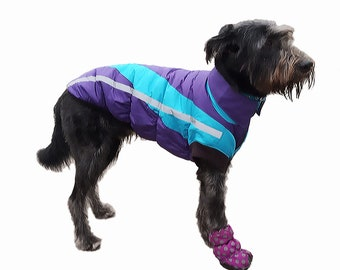 Dog coat in colorful for winter with saying-dirt-repellent-in S-individually personalized