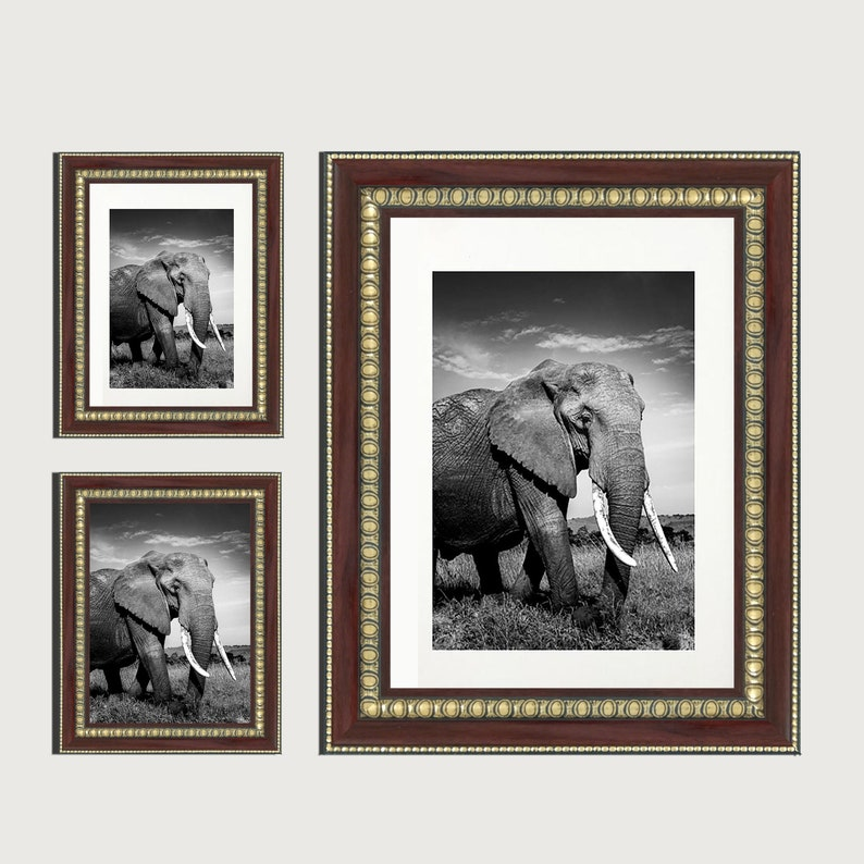 Photo Picture Print Poster Frame Made In The INDIA A3  A4  A5  A6  Maroon Golden Frame WHITE MOUNT