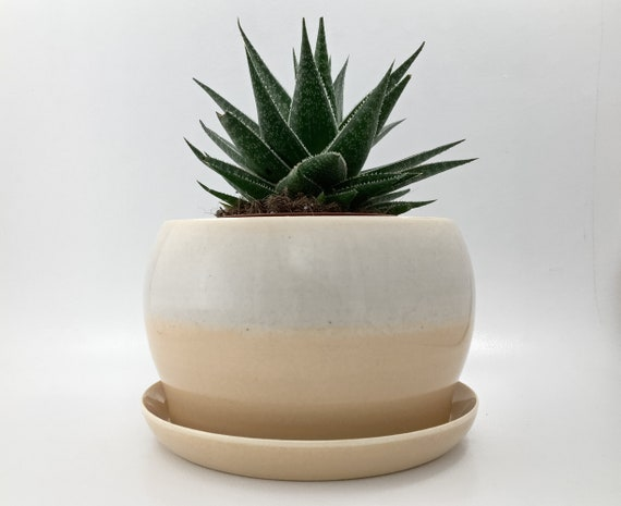 Self Watering Planter  7 Inch  Resin Glazed Finish
