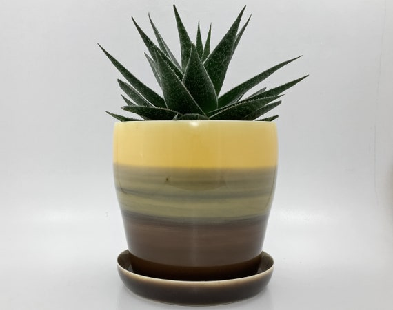 Self Watering Planter  5-1/2 Inch  Resin Glazed Finish