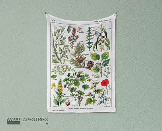 Vintage Botanical Print Calmin Plants Science Tapestry Wall Etsy