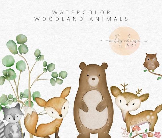 Woodland Animals Woodland Nursery Watercolor Clipart Watercolor Animals Woodland Clipart Woodland Creatures Cute Animals Kids Clipart