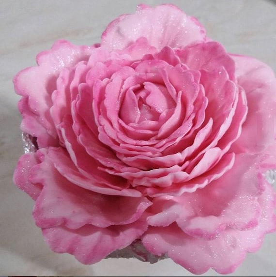 3 Units Closed Sugar Peonies 3 To 4 Inches 7 5cm To 10cm Etsy They are used to measure small distance. etsy
