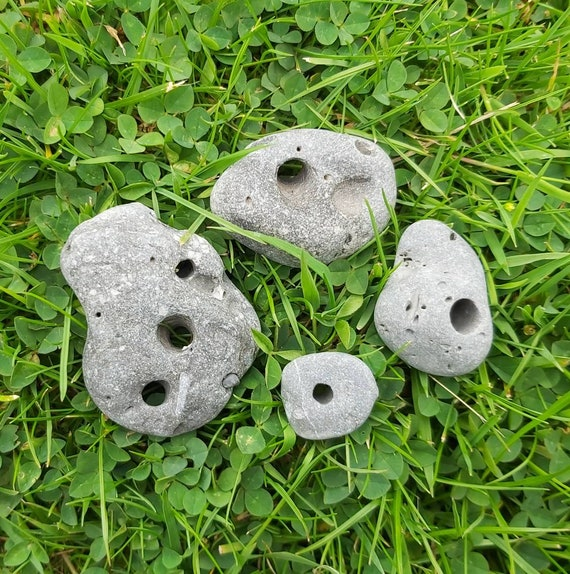 4 Irish Hag Stones Mystery Pack Holey Stones Etsy Natural fibre has been used to tie it to the fence. etsy