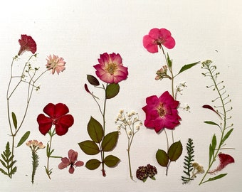 Original Art with Real Pressed Flowers, Rose Garden, Wall Décor