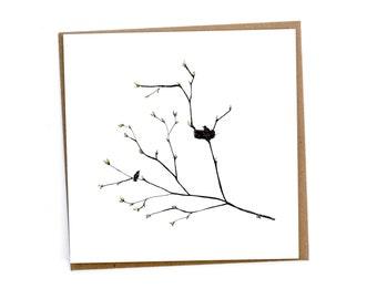 Kaart van nestelende vogels - Renée's Pics & Paintings