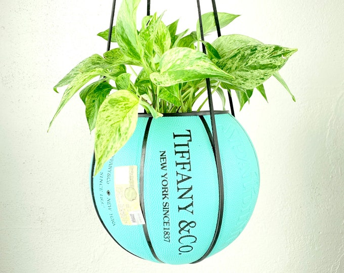 T&Co X Spalding Basketball Planter by Plantsketball