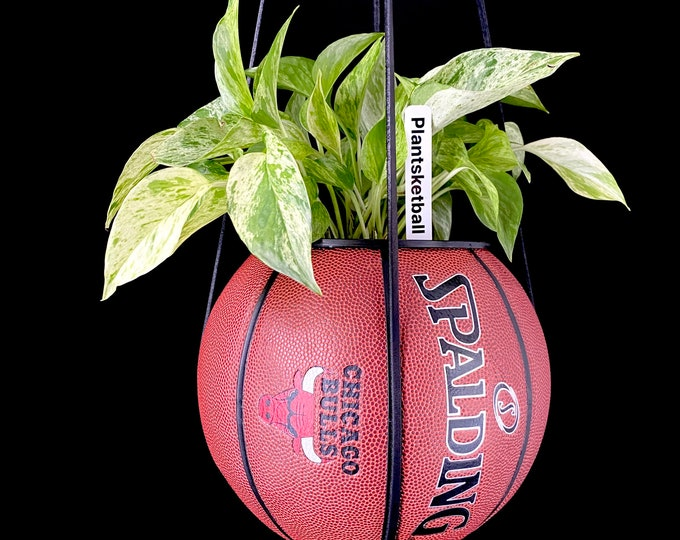 Chicago Bulls Vintage Spalding Plantsketball