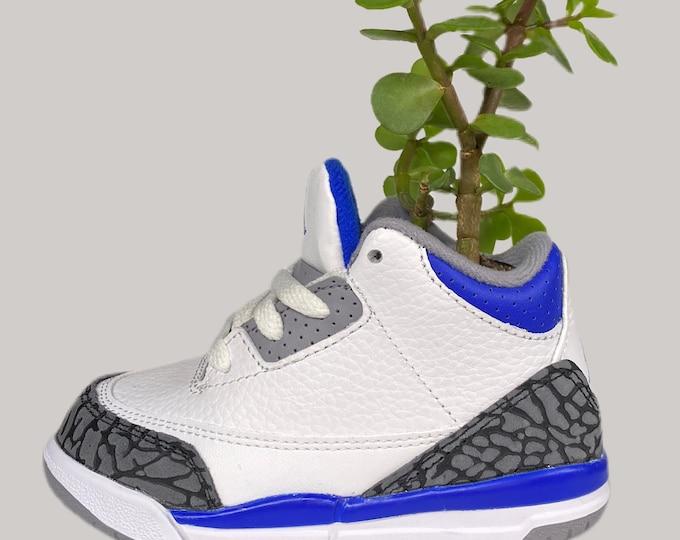 """Air Jordan 3 """"Racer Blue"""" Sneaker Planter by Plantsketball"""