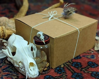Oddities Mystery Box