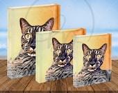 Acrylic Block Cartoon Pets Acrylic Blocks Custom Pet Portraits Home Decor Table Top Pictures Family Photos Pet Photo Gifts