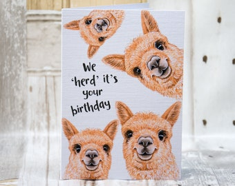 Alpaca herd birthday card, A6 Greetings Card