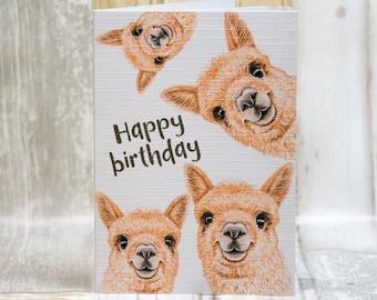 Fawn alpaca/cria happy birthday, A6 greetings card