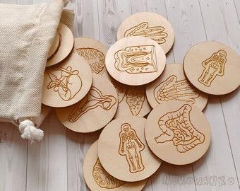 Human Organs 12 pairs Body Biology Wooden Memory Game Matching Little Kid Toddler Educational Learning Montessori Homeschooling Children