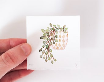 Tiny original watercolor plant painting, Hanging plant pale green watercolor wall decor for crazy plant lady, Botanical pink watercolor art