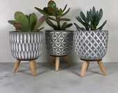 Concrete plant pot with wooden tripod legs. Scandi / mid-century style. Cute grey indoor planter. Great for a cactus or succulent!