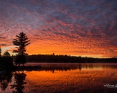 Sunrise in Algonquin – Fine Art, Landscape Photography, Sunrise, Sunset, Algonquin Park
