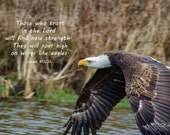 Wings Like Eagles – Fine Art Print, Bald Eagle, Bald Eagle Photography, Wildlife Photography, Eagle Art, Majestic Bald Eagle, Isaiah 40:31