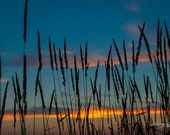 Sunset in Oxford County | Fine Art, Landscape Photography, Sunrise, Sunset, Luther Marsh