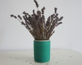 Cement plant pot | Concrete pot | Green cement flower pot | Cement plant vase