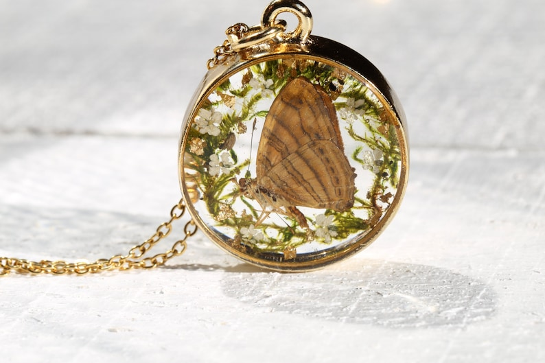 Terrarium Necklace Real butterfly necklace Woodland Necklace Resin Jewelry Real Specimen Real Flower Necklace Botanical Necklace
