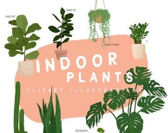 8 Indoor Plant Illustrations | Plant Lovers | Digital Download | Social Media images | Clip art | PNG