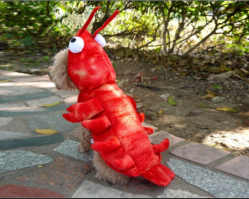 Lobster Dog costumes for Halloween pet Halloween costume dog image 0