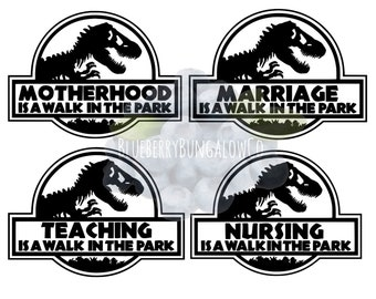 Small Scale Jurassic Park Logo Custom Waterslide Decals