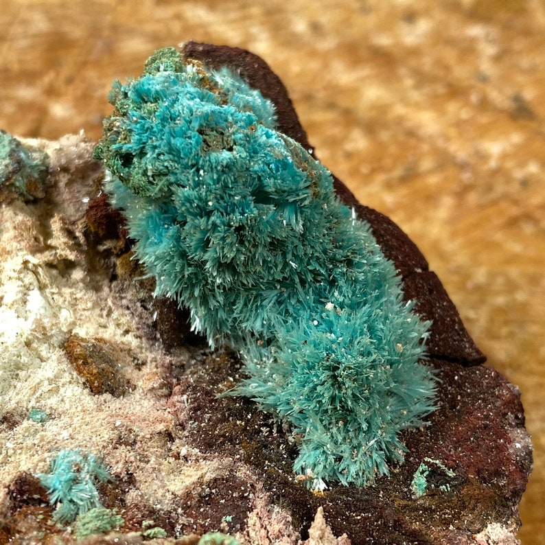 Top Quality Fibrous Aurichalcite From Chihuahua Mexico