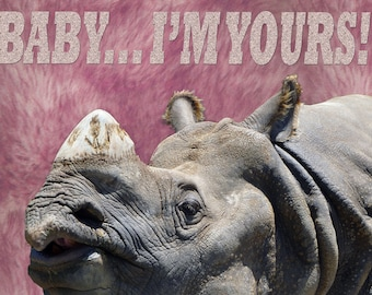 b-rhino-2 RHINO rhinoceros Safari Africa I love pin brass brooch lover rhinos
