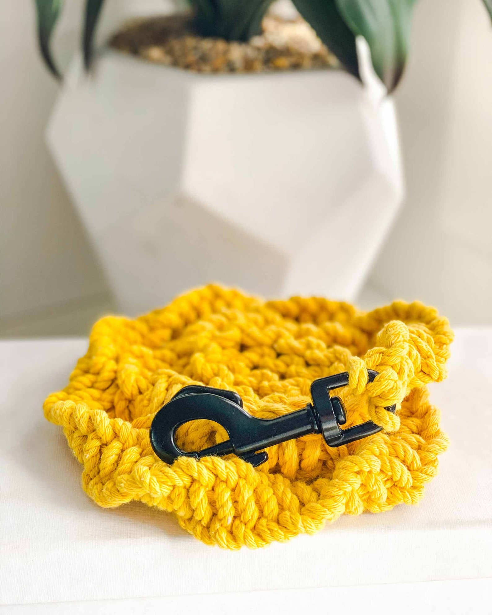 Golden macrame dog leash