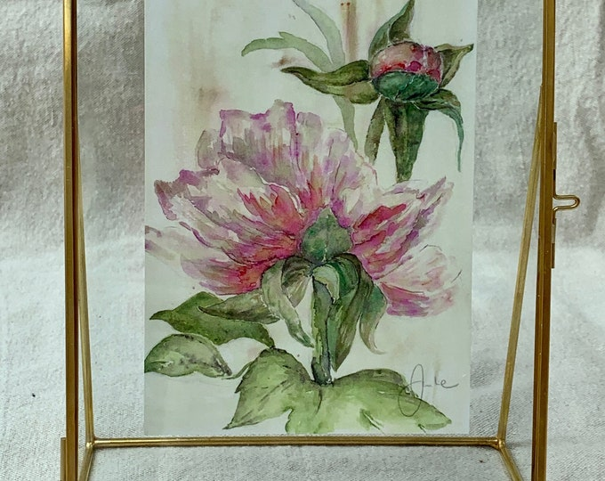 The Peony - Old-fashioned Watercolor Printing