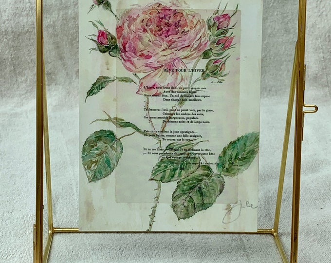 La Rose Centifolia - Old-fashioned watercolor print in a brass frame
