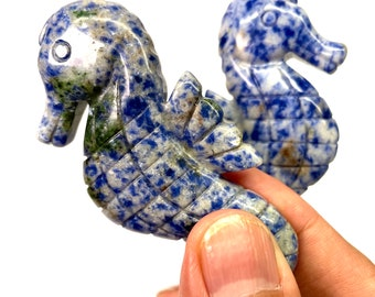 Sodalite Seahorse