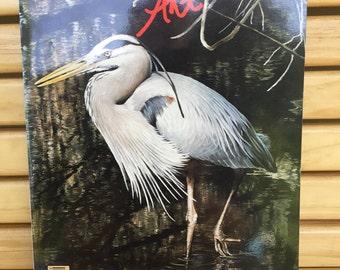 Wildlife ART News.  The International Magazine.