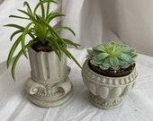 Greek Mini Planters | European Planters | Roman Planters | Greek Goddess | Greek Goddesses | Athena | Aphrodite