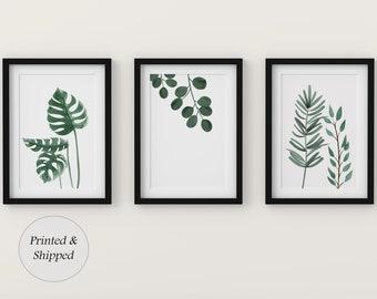 Botanical Prints, Set of 3 Prints, Wall Art, Home Decor, Bathroom Decor, Botanical Illustration, Leaf Prints, Bathroom Prints, Home Prints