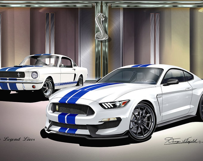 1966-2016 Mustang Shelby Art Print