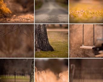 10 Digital Backgrounds/Backdrops