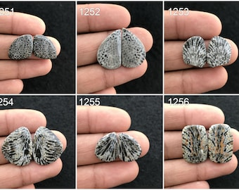 Black Fossil Coral cabochon For Pendant Making Gemstone Jewelry K-184 AAA Black Fossil Coral Cabochon Loose Gemstone