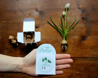 10 wedding favors or event gift with a little paper box with a bulb inside. Customizable with names and date. Botanical theme with plants