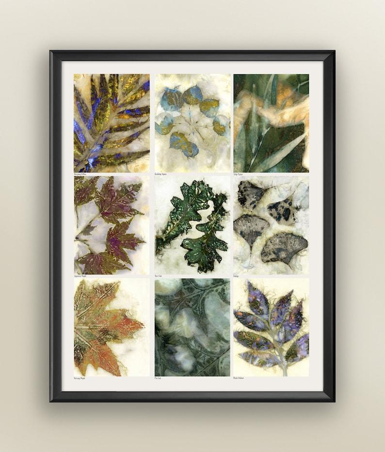 Botanical Print Nine Leaves Eco Print Poster Eco Print 16x20 Print Leaf Poster Leaf Identification