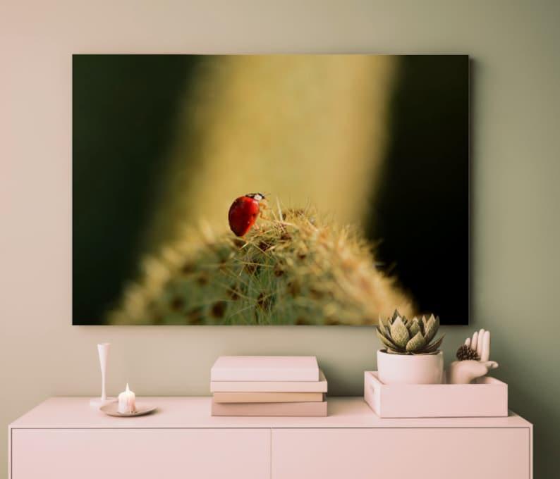 Ladybug Photography Print  Nature Photography  Flower Macro Print  Botanical Print   Macro Photography  Flower Decor  Home Decor