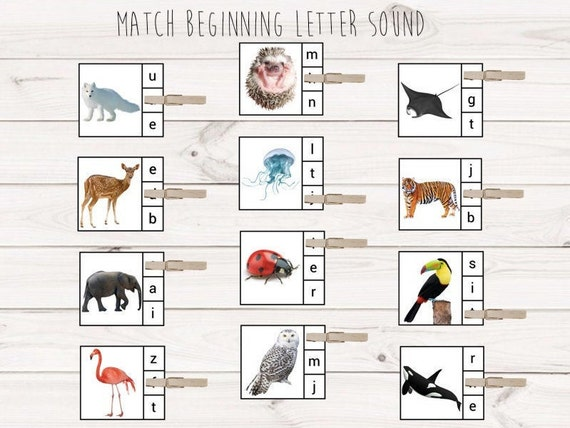 84 Animals Insects Match Beginning Letter Sounds Letter Etsy